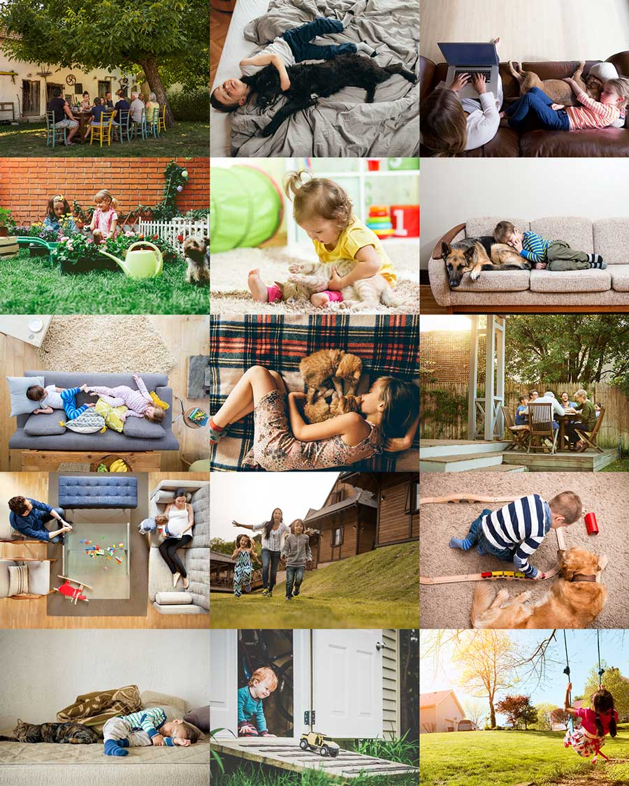 Collage of stock photography backgrounds used for All Corners Pest Control